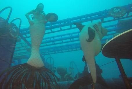 Keren! Amerika Punya Galeri Bawah Laut Pertama Di Dunia