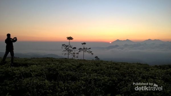 Ide Liburan Weekend Ini, Ke Taman Nasional Gunung Halimun