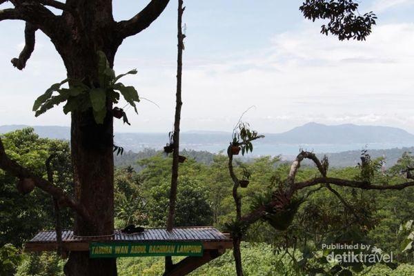 Bukan Kalibiru, Ini Tahura Wan Abdul Rachman Di Lampung