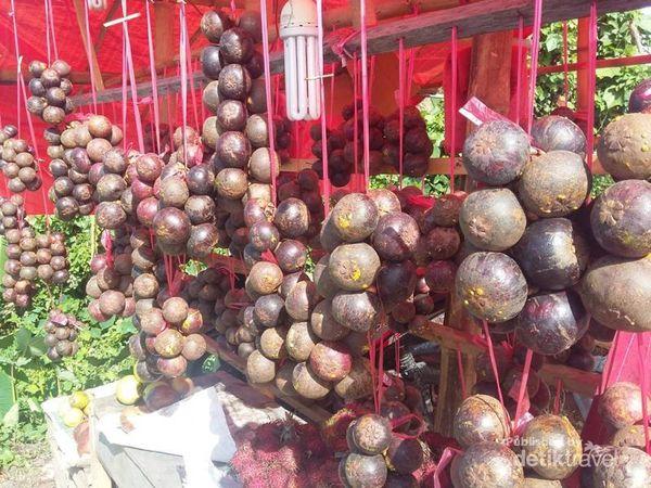 Manggis, Buah Tangan Manis Dari Pidie Jaya Aceh
