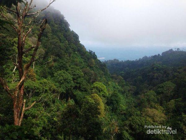Sensasi Lari Di Gunung Gilituri, Magelang