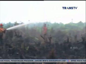 Terdapat 186 Titik Api di Riau