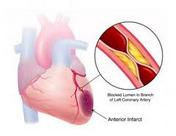 Sembuhkan Jantung & Penyakit Dalam