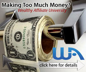 Wealthy Affiliate Business