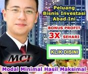 Passive Income~Website Disediakan