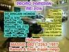 Dealer Resmi Honda Dp Mulai 16 Jt