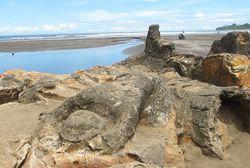 Ini Wujud Batu Malin Kundang di Padang