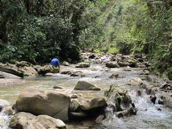 Sungai Sebening Kristal di Pedalaman Papua