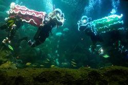 Begini Aksi Barongsai di Dalam Air
