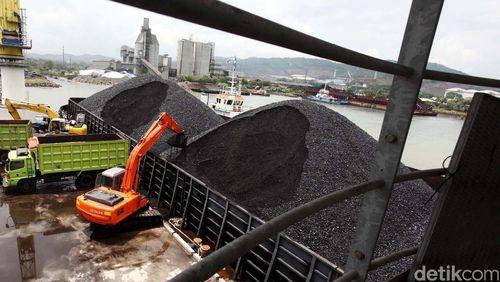 La Nina Diprediksi Tak Ganggu Produksi Batu Bara RI