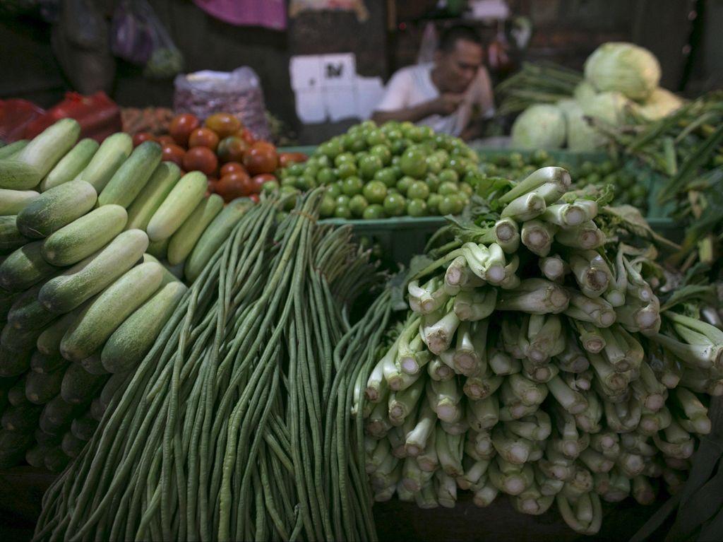 Bingung Pilih Diet, Perbanyak Makan Sayur Lebih Efektif Pangkas Berat Badan