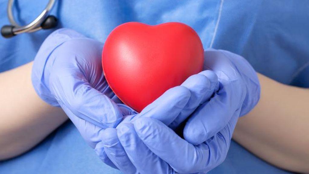 Donorkan Organ, Balita yang Meninggal karena Kanker Selamatkan Anak Lainnya