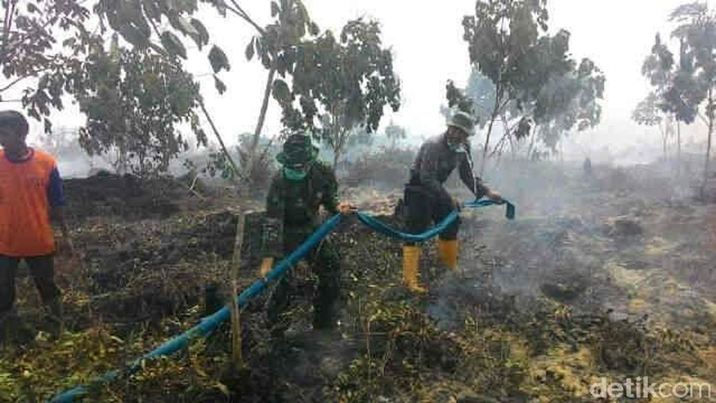 Luas Kebakaran Hutan dan Lahan di Riau Capai 3.600 Hektare