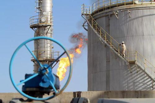 RI Tawari Nigeria dan Irak untuk Ngebor Minyak di Tanah Air