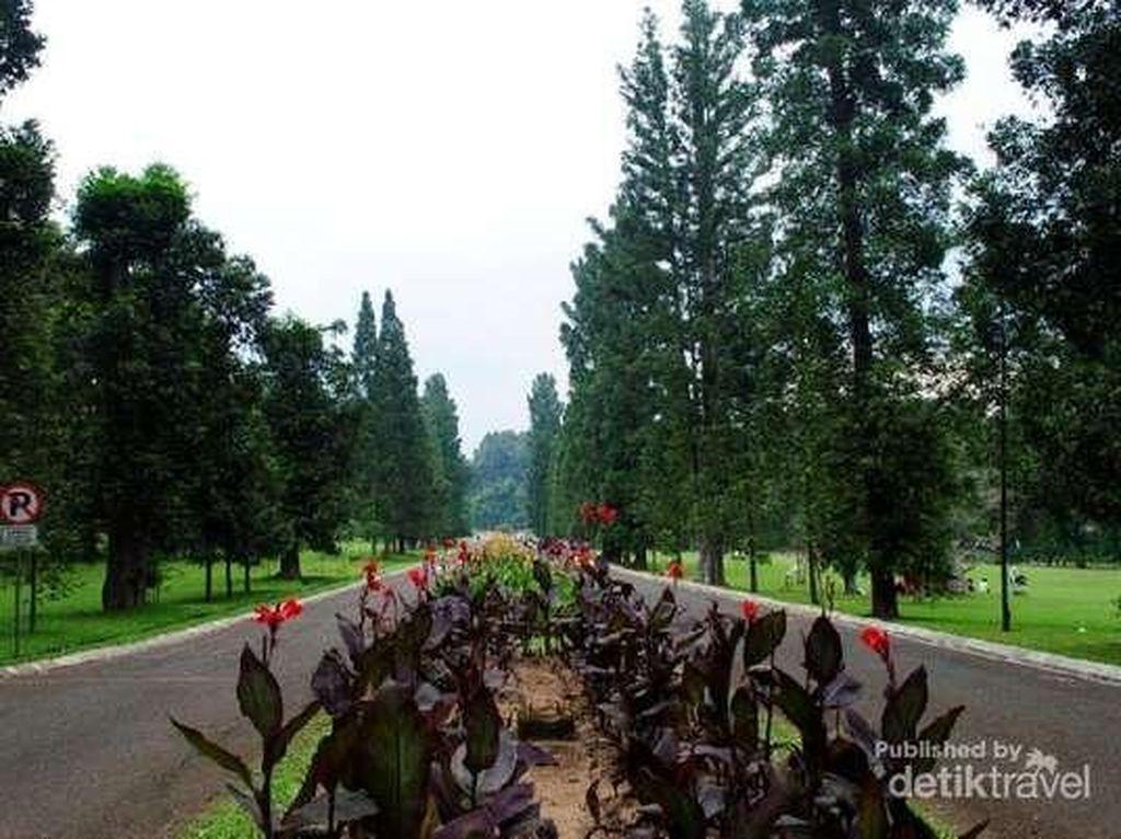 Rekomendasi 6 Tempat Wisata Asyik di Bogor