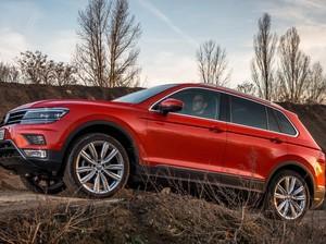 VW: Tiguan Anyar Belum Dirilis Tahun Ini