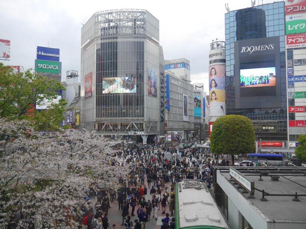 Ini Destinasi Favorit Wisatawan Indonesia di Jepang