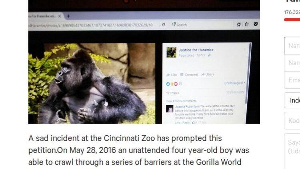 Kasus Gorila Ditembak Mati di AS, Ibu Ini Minta Publik Tak Hakimi Dirinya