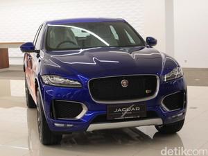 100 Mobil Jaguar Siap Panaskan Sirkuit Le Mans