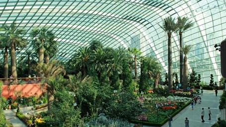 Singapura Punya Taman Dengan Tumbuhan Dari Seluruh Dunia