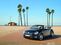 13 Model VW Beetle yang