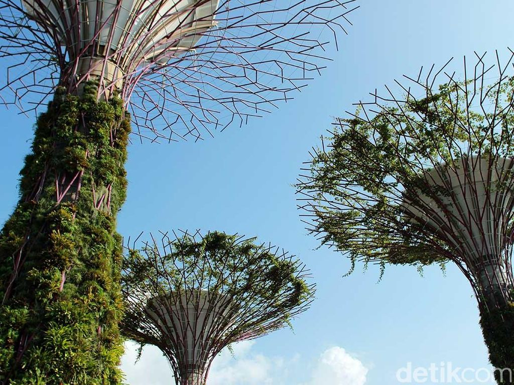 Melihat Bunga & Tumbuhan Dunia di Gardens by The Bay