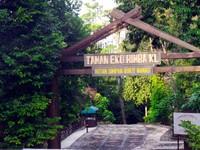 Penampakan Hutan Belantara & Jembatan Kanopi di Jantung Kuala Lumpur