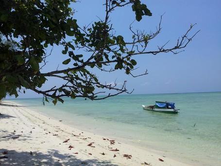 Pulau Kapota Di Wakatobi: Dari Pantai Eksotis Hingga Gua Kelelawar