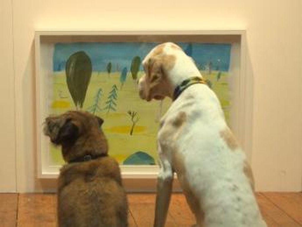 Ajaib! Ada Pameran Seni Tapi Khusus untuk Anjing