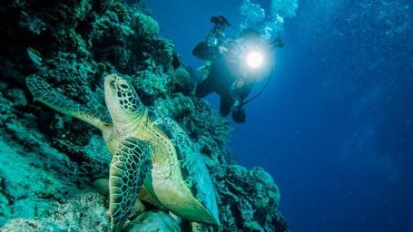Kenapa Wisata Bahari Penting Untuk Indonesia?