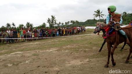 Atraksi Kuda Yang Seru Di Lombok Dan Sumba