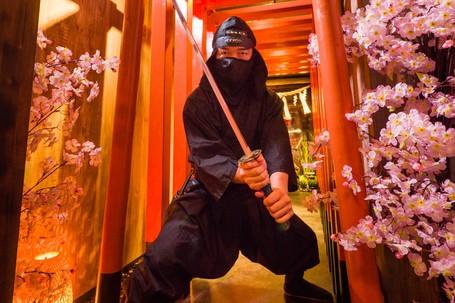 Yang Tak Boleh Dilewatkan Di Jepang, Jadi Ninja Sehari Di Tokyo
