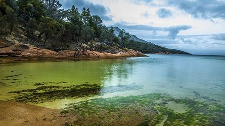 Tasmania, Destinasi Baru di Australia