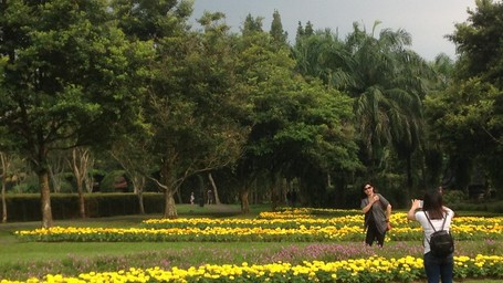 Taman Bunga Nusantara Yang Katanya Seperti Di Eropa