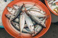 Seperti Ajakan Menteri Susi, Ini 6 Manfaat Super Hobi Makan Ikan