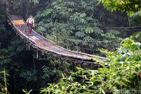 Menengok Jembatan Gantung Mengerikan Penghubung Jakarta-Depok