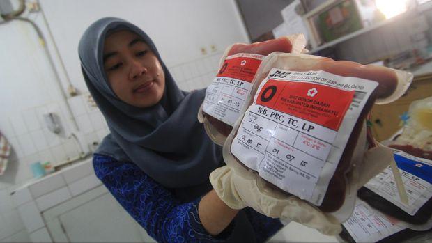 ilustrasi donor darah
