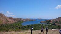 Pulau Komodo sudah punya sinyal 4G Telkomsel (Indra/detikNews)