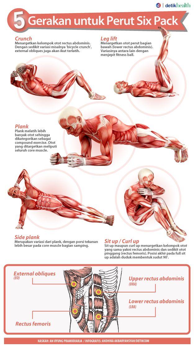 Latihan Otot Perut | OSBORN