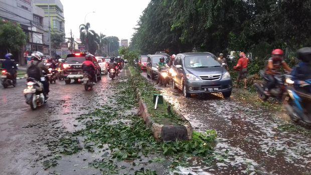 095adc75 bc11 421f 90fa 4c23055f0d12 169 » Pohon Tumbang Di Kalimalang, Dishub Bekasi: Warga Yang Ke Jaktim Gunakan Alternatif