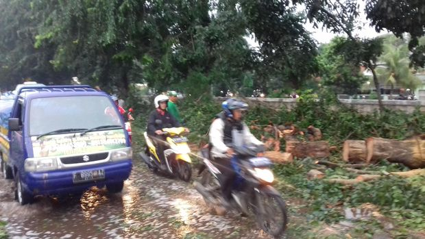 f8daebe6 c53a 4efc 9a9a 6180fa799ad8 169 » Pohon Tumbang Di Kalimalang, Dishub Bekasi: Warga Yang Ke Jaktim Gunakan Alternatif