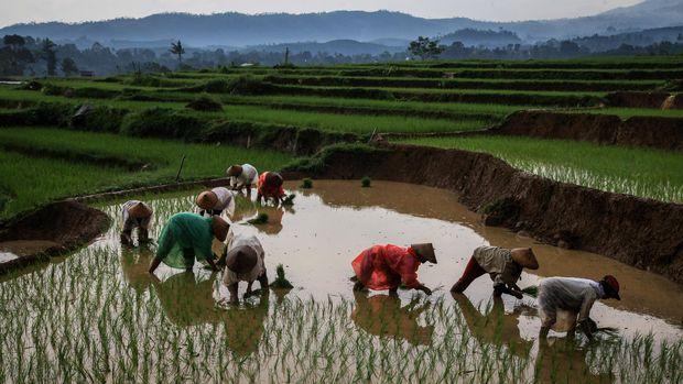 Sidang MC11 harus menjadi momentum bagi Indonesia memaanfaatkan potensi perdagangan internasional dalam mencapai ketahanan pangan.