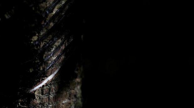 Bandar Keliling, Bandar Q, Capsa Susun, Cara Bermain Capsa Susun, Cara bermain Domino QQ, Cara Bermain Poker, Domino QQ teraman, Judi Uang Asli, Poker Indonesia, Poker Online Terpercaya, Poker Teraman, Poker Uang Asli, Sabung Ayam, Slot Game, Trik Baca Kartu Lawan, Trik Jitu Poker, Trik Menang Poker Online