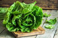 Ini 9 Makanan Terpercaya Sebagai Anti Penuaan Dini Terbaik