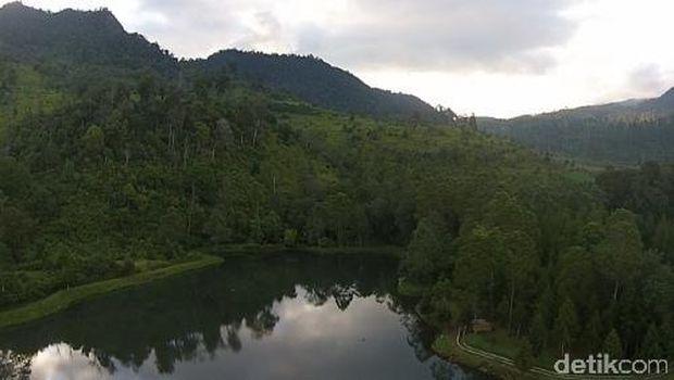 Pemandangan pepohonan rindang (Okta/detikTravel)