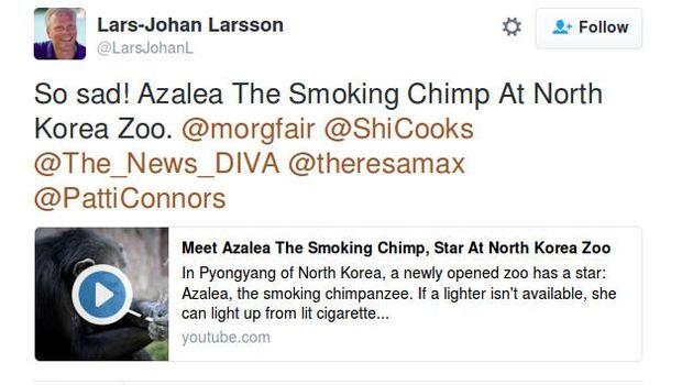 Tak terkecuali, para praktisi kesehatan juga sedih melihat Azalea