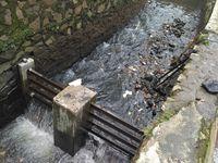 Tentang Sungai Cianting dan Terendamnya Jalan Pasteur