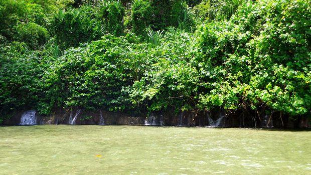 Air Terjun Arawai dari kejauhan (Wahyu/detikTravel)