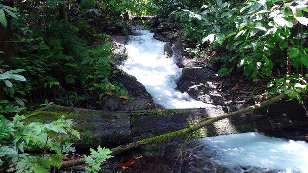 Sungai yang menjadi sumber Air Terjun Arawai (Wahyu/detikTravel)