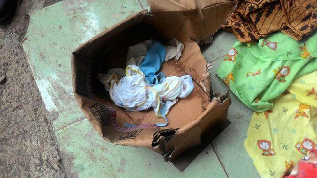 Bayi malang itu dibuang dalam sebuah kardus bekas.